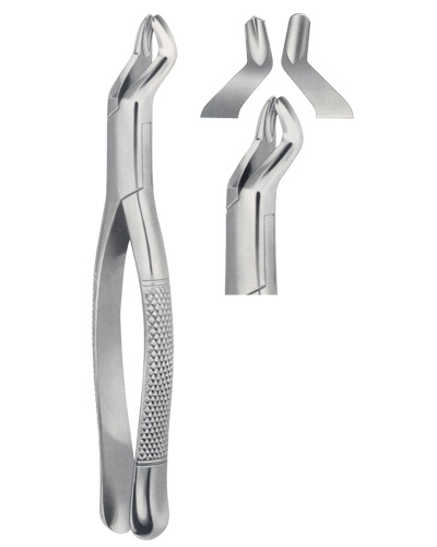 Tooth Forceps, American Pattern for upper roots &